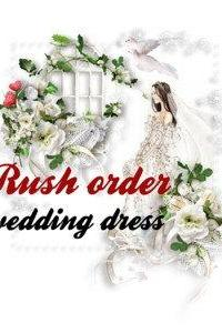 Super express shipping wedding dress